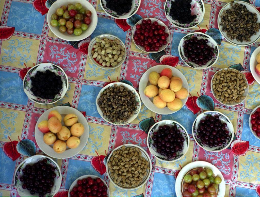 fruit biocultural diversity